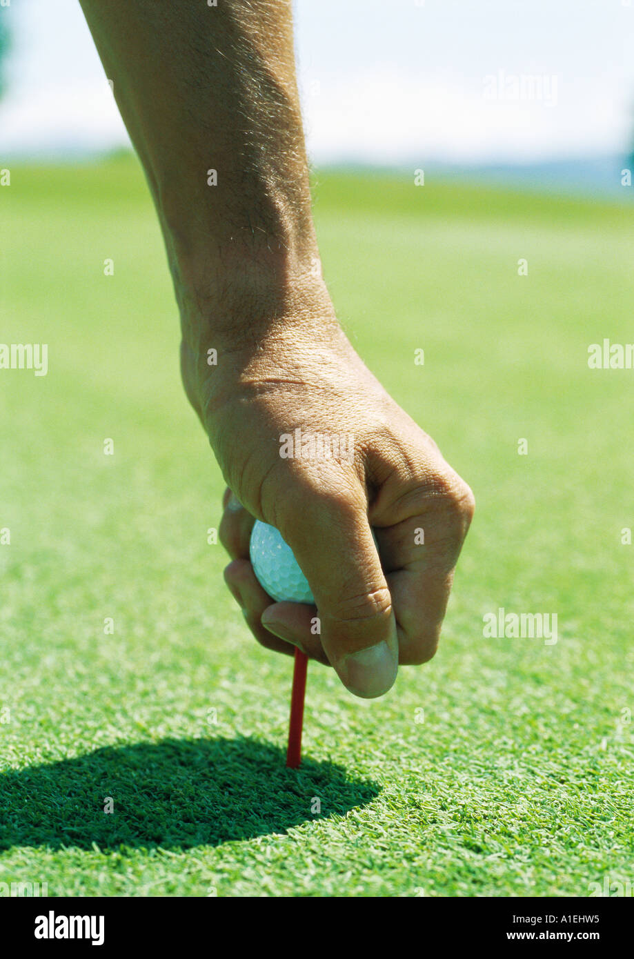 Man placing golf ball on tee - Stock Image