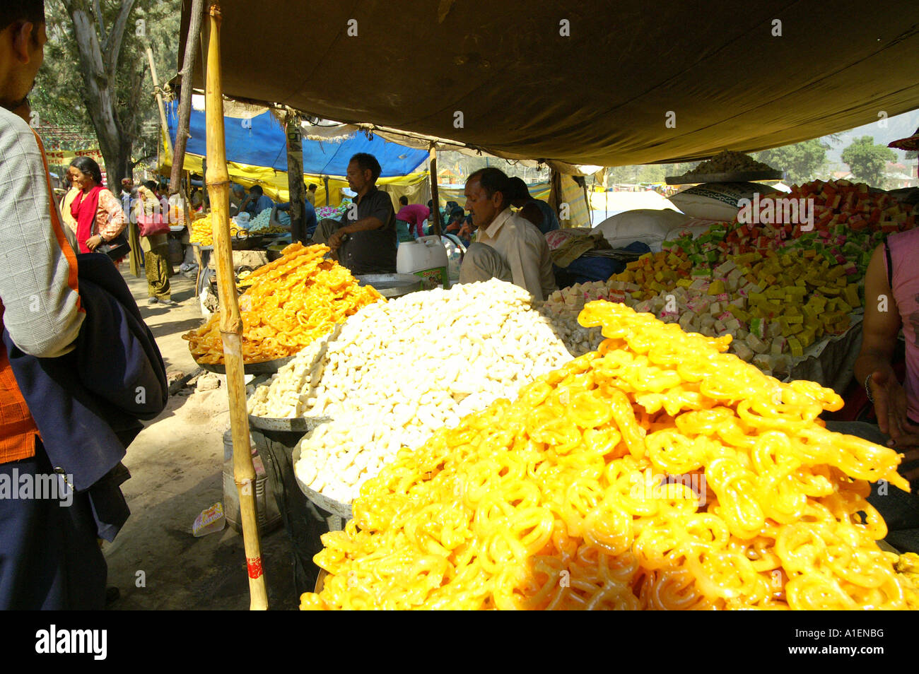 Stalls at Dussehra fair with enormous variety of rich Indian cuisine meals, Kullu, India - Stock Image