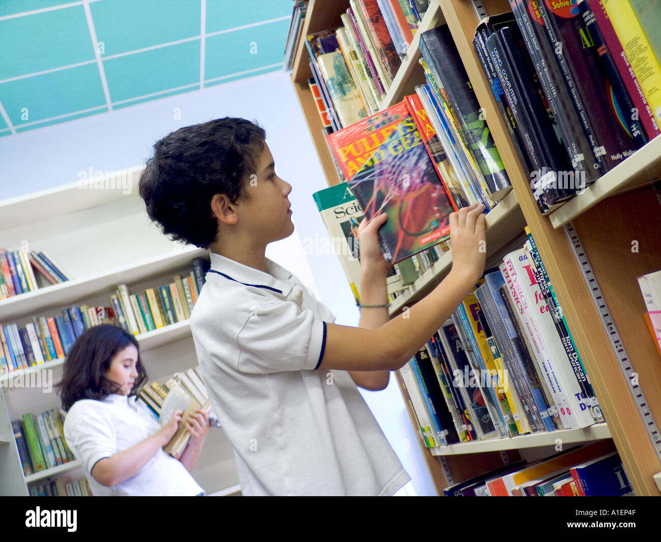 Junior schoolboy searches for reference book in school library - Stock Image