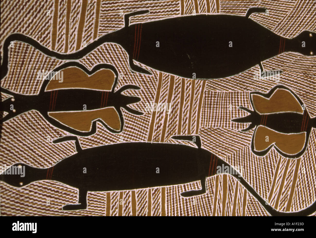 Snakes, goannas, kangaroos and other bush creatures figure in the dreaming theme of  aboriginal paintings in Central Australia. - Stock Image
