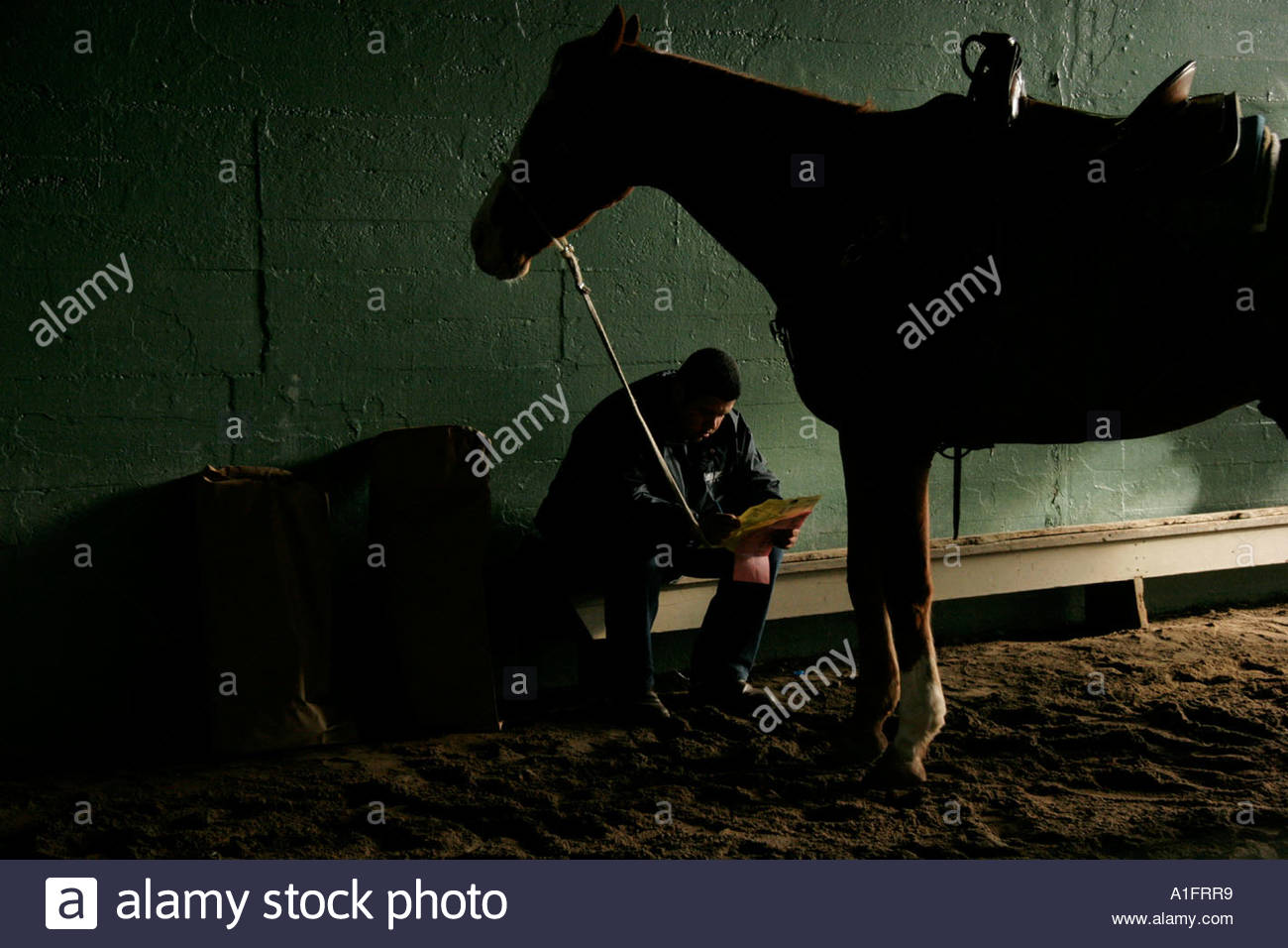 Horse Trainer and Horse Passing Time Before Race Santa Anita Race Track Arcadia California - Stock Image