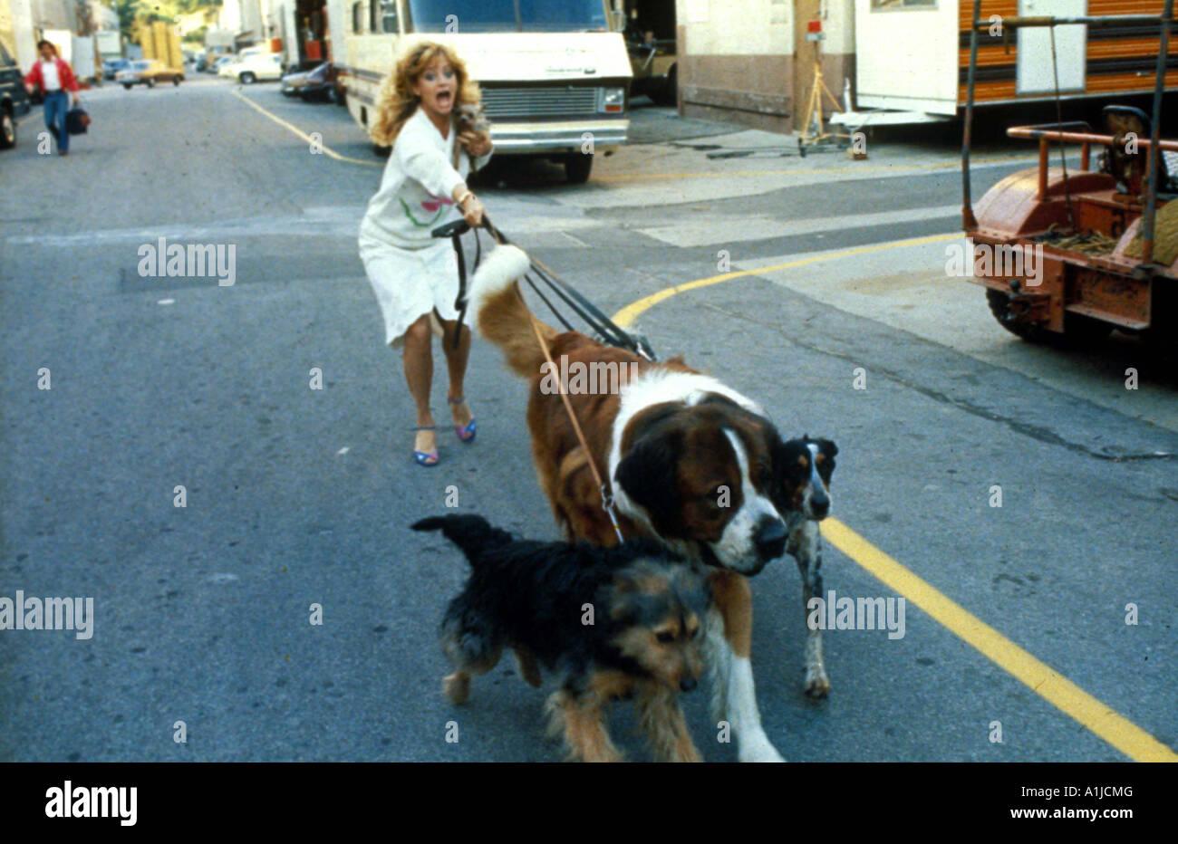 Goldie Hawn Director Stock Photos & Goldie Hawn Director Stock ...