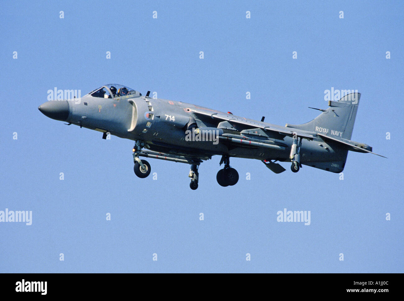 Royal Navy Sea Harrier FA2 STOVL fighter attack aircraft - Stock Image