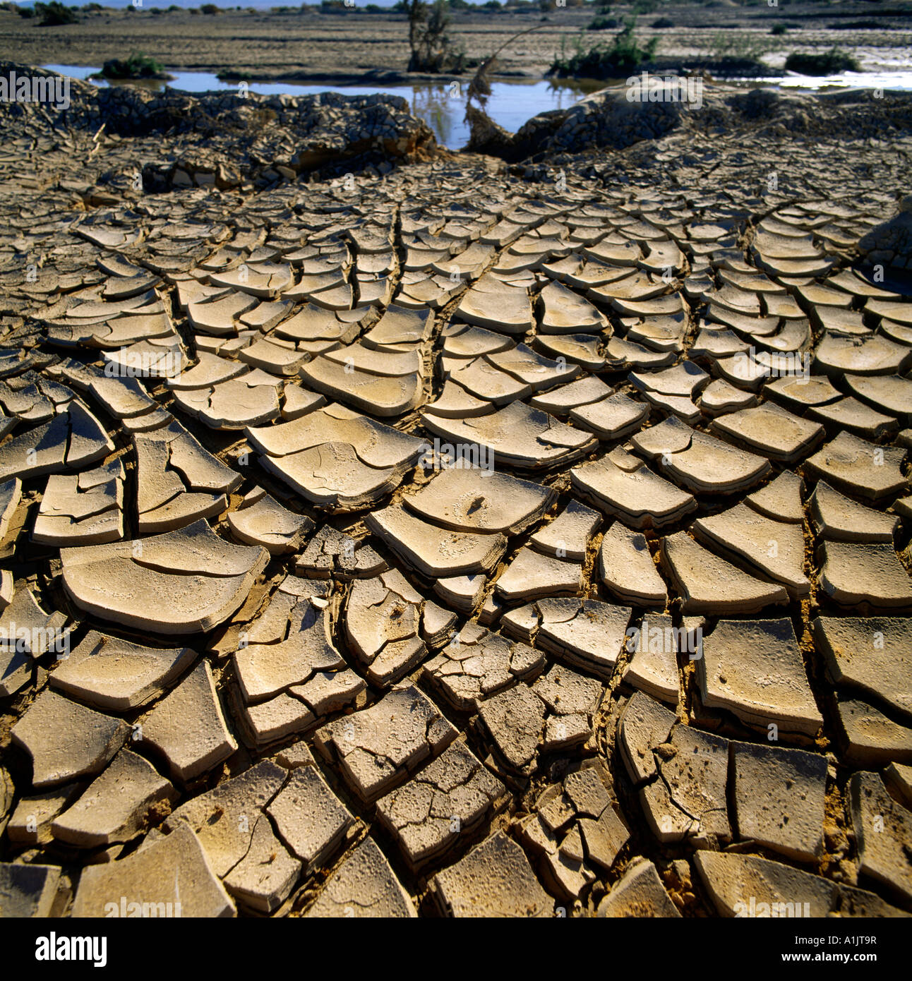 Tunisia Drought  Cracked Ground Chott Er Rahim - Stock Image