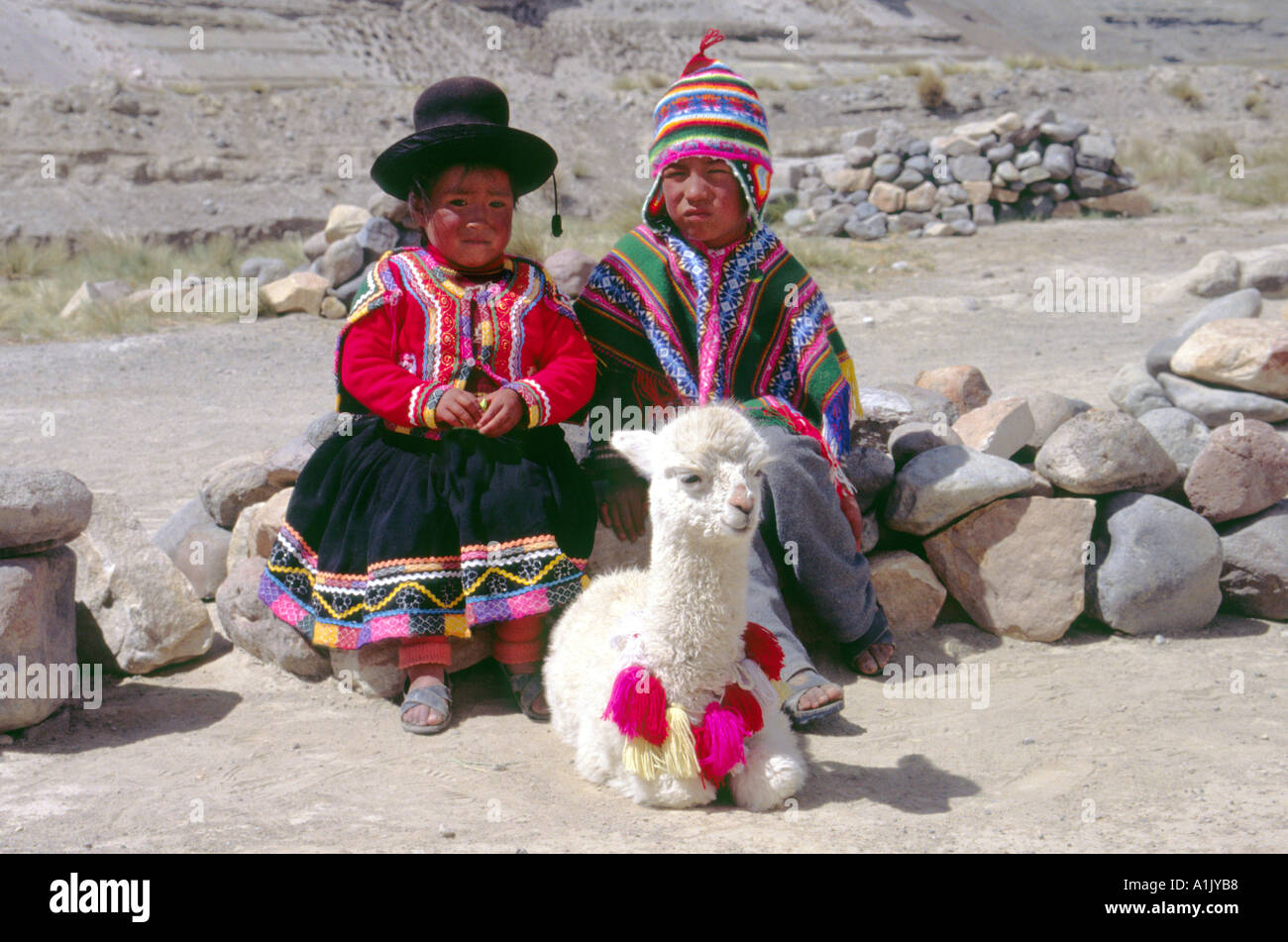 Boy And Girl In Traditional Embroided Clothing With A Baby Alpaca In