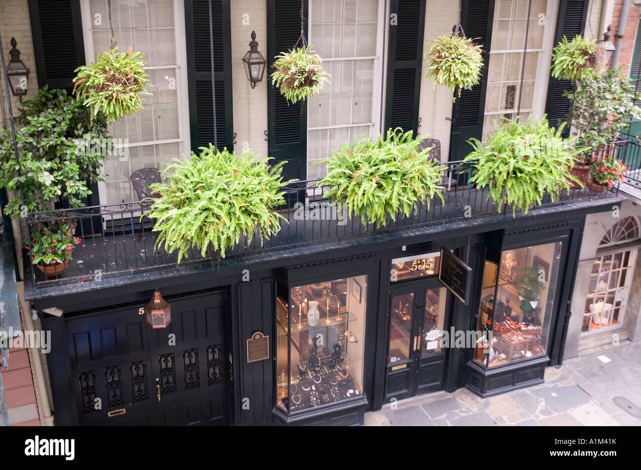 A balcony with hanging ferns in the French Quarter in New Orleans Stock Photo