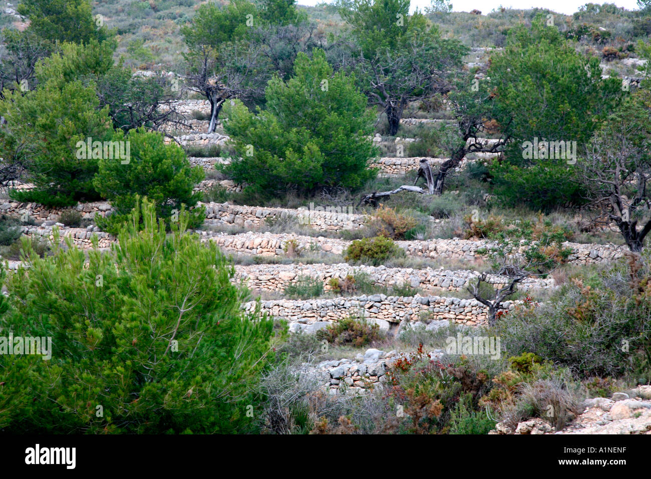 spanish stone walls on the hills - Stock Image