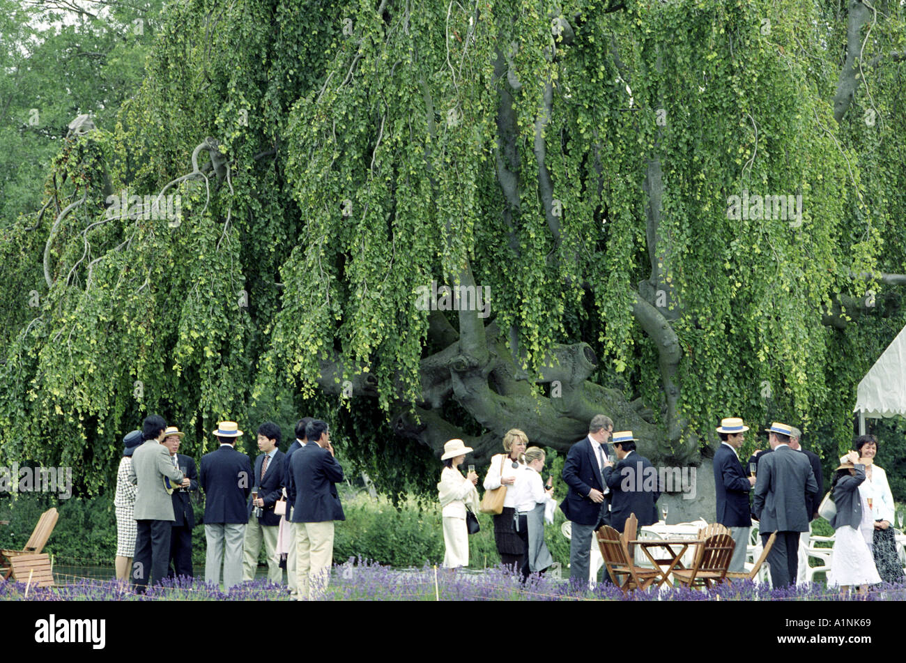 Spectators at the Henley Royal Regatta Temple Island Henley on Thames UK - Stock Image