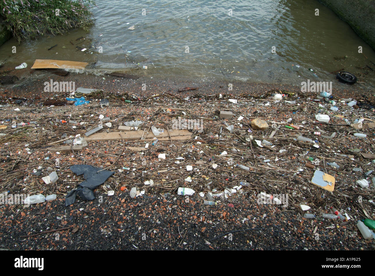 London Greenwich shoreline of river Thames with assorted rubbish deposited by tides England UK - Stock Image