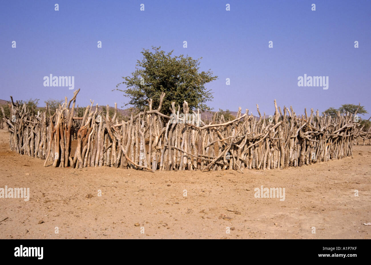 Animal stockade, Himba village, Namibia - Stock Image