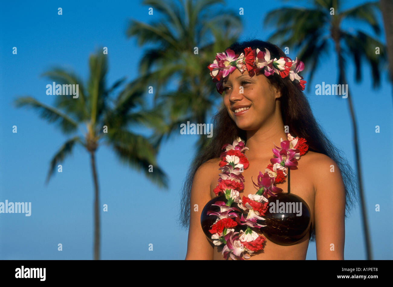 nativo hawaiano dating