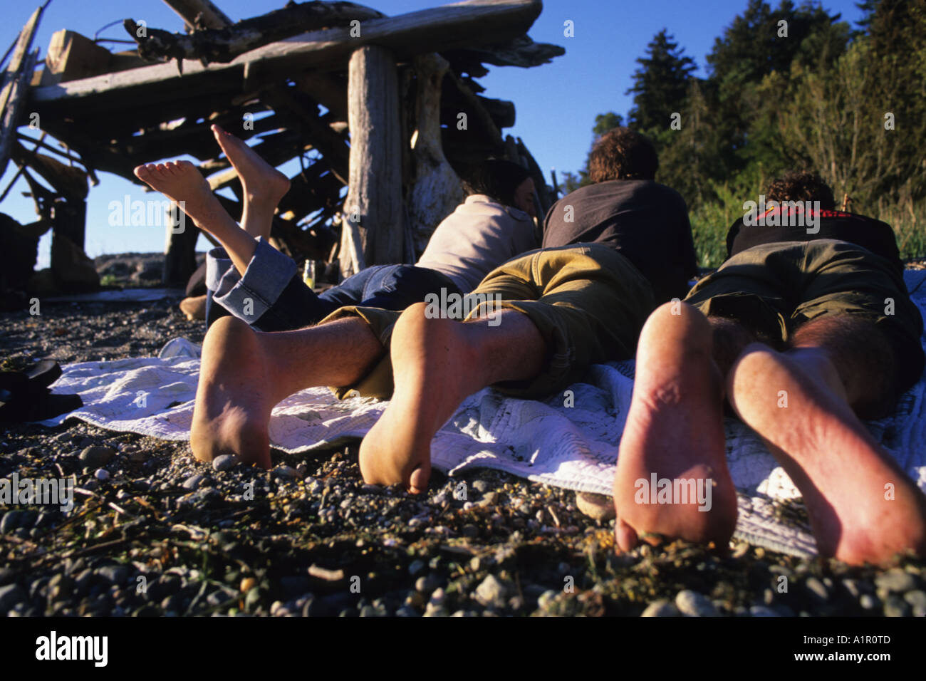 Hanging out with friends on beach. Vashon Island - Stock Image