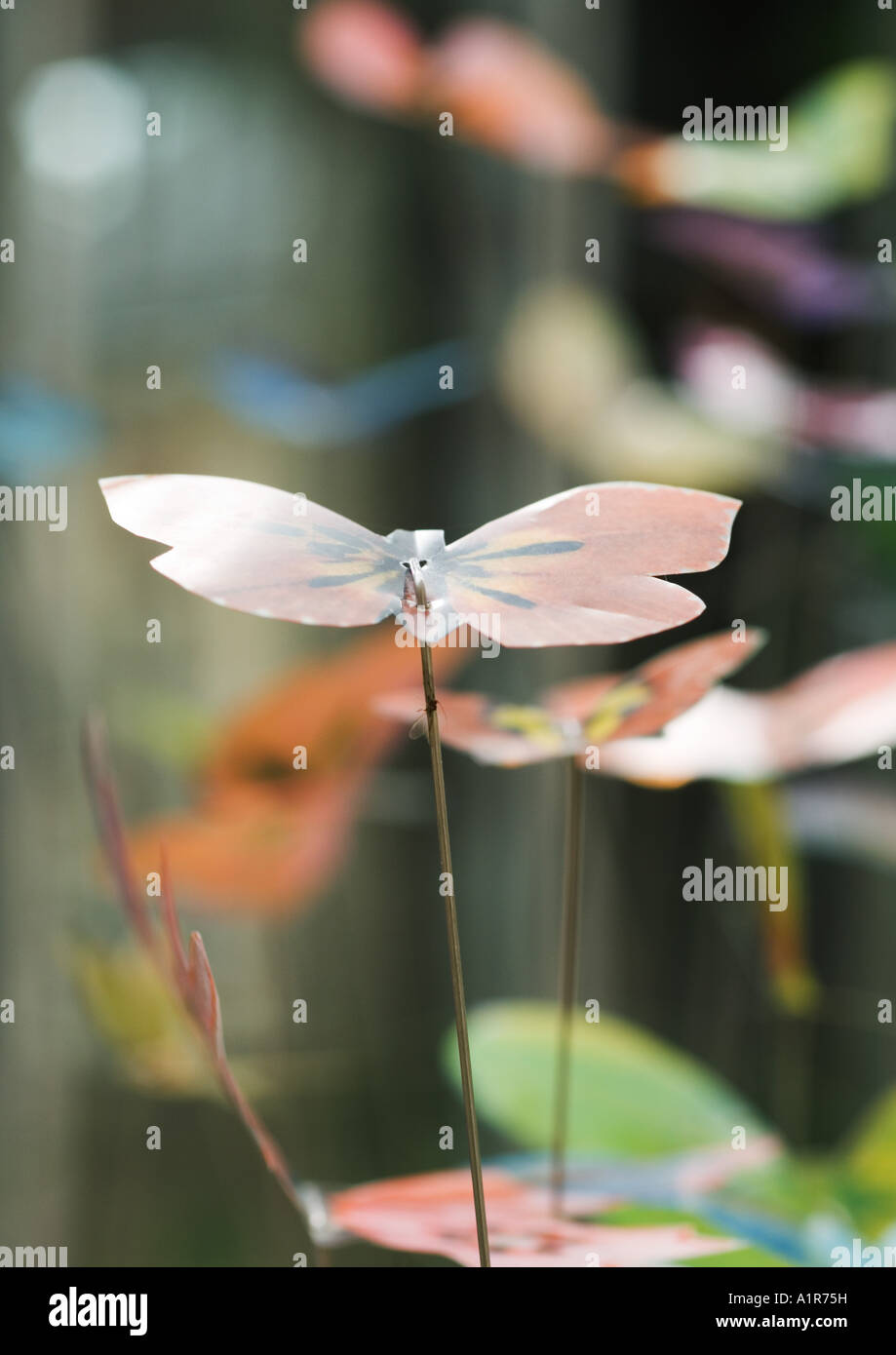 Butterfly decorations - Stock Image