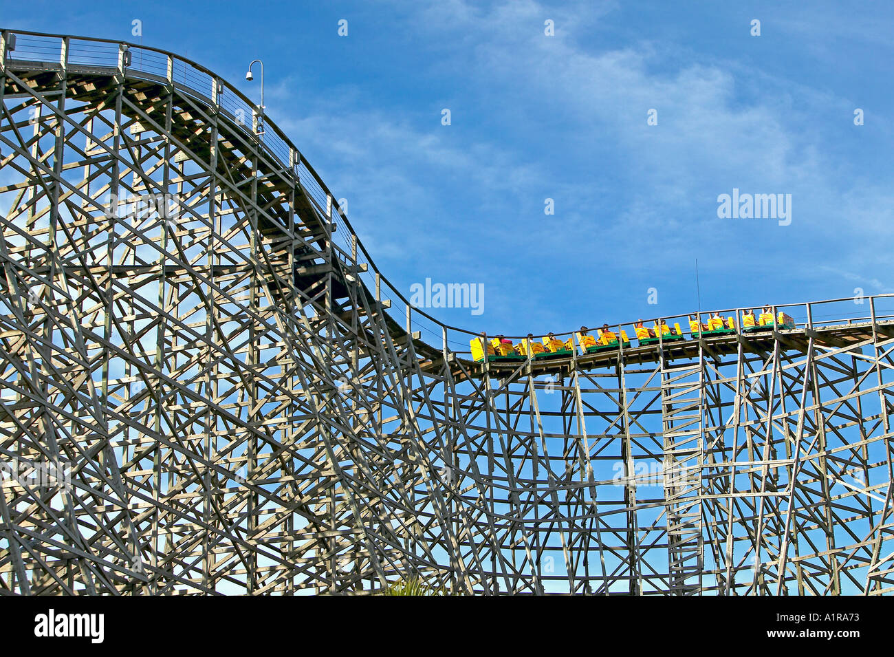 Gwazi Wooden Roller Coaster At Busch Garden Tampa Florida Stock
