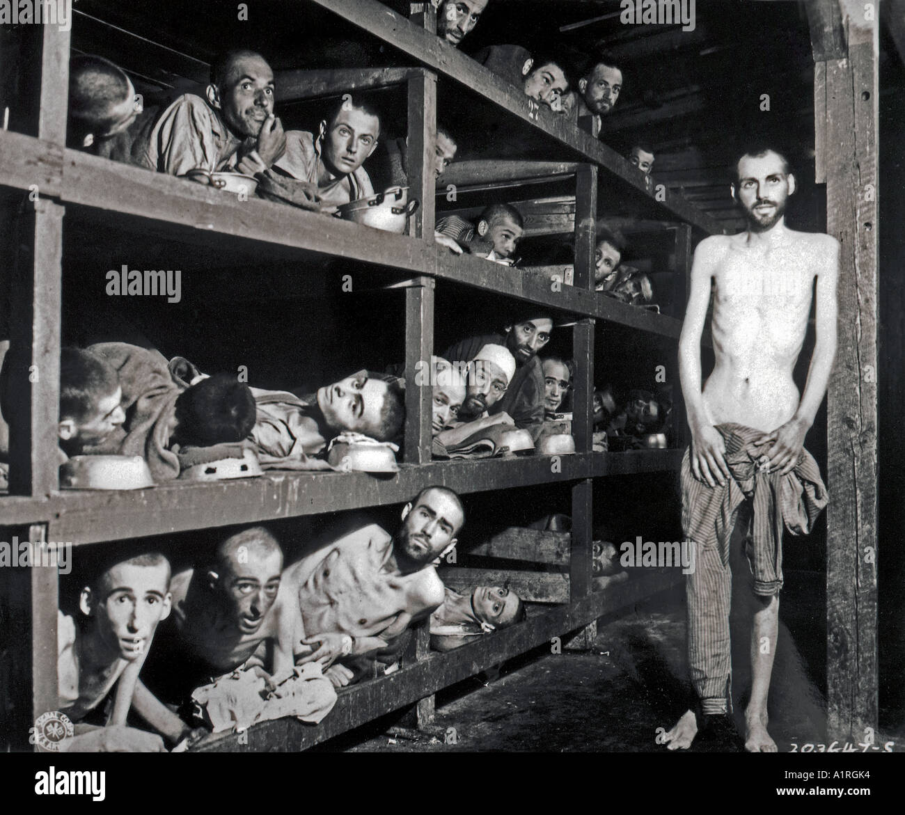 the description of the german holocaust from eli wiesel perspective Wiesel, who died on july 2 aged 87, emerged as the voice of holocaust survivors in part because his short memoir, night, was published at what, in retrospect, was the right time.