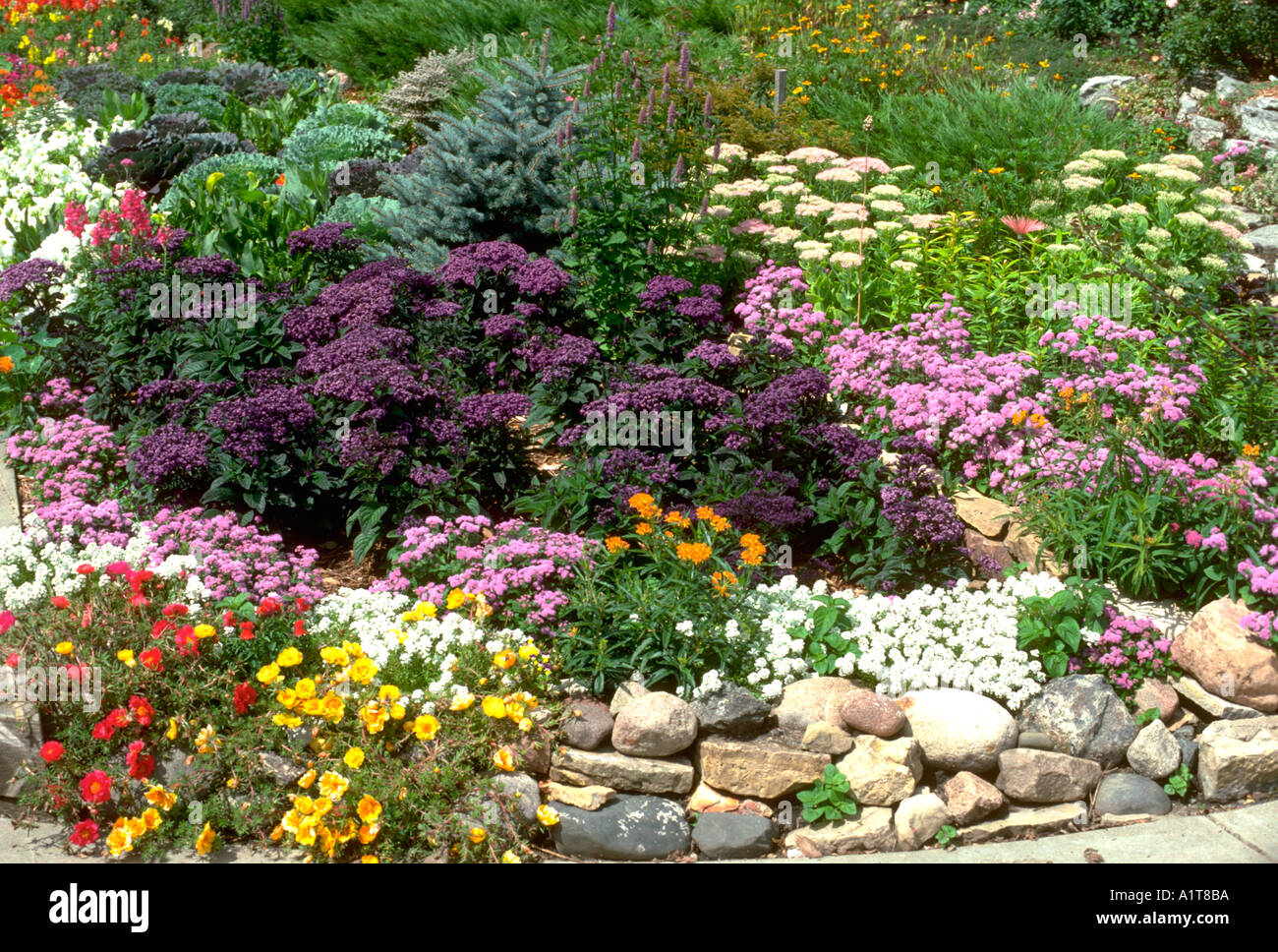 Beautiful Annual And Perennial Flower Garden Lined With A Rock