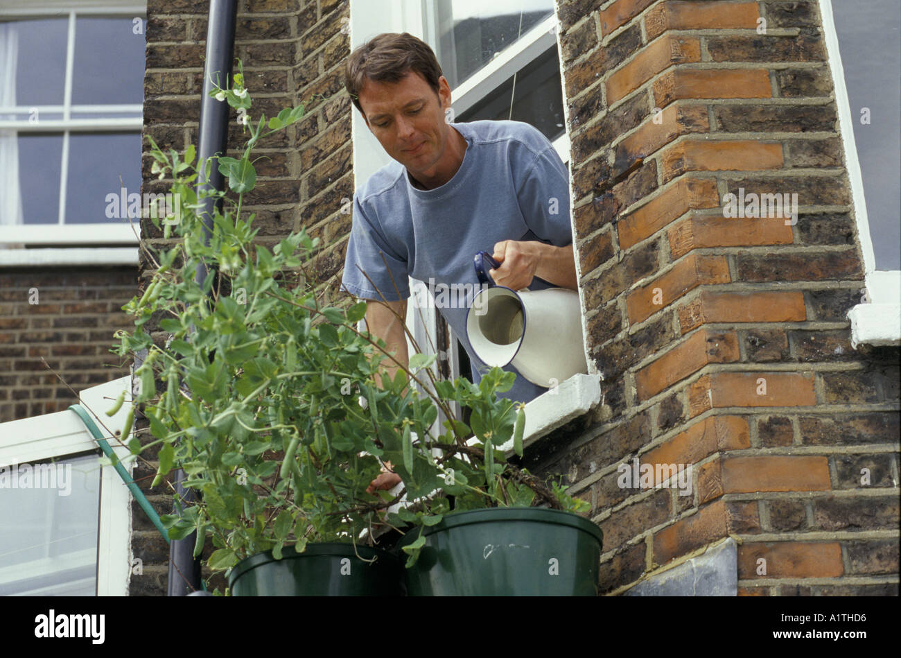 Watering plants - Stock Image