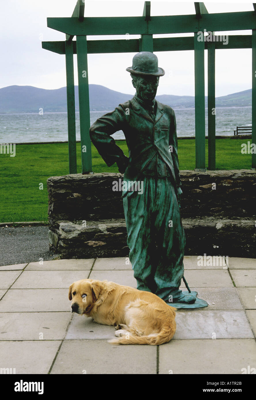A STATUE OF CHARLIE CHAPLIN  With A LOCAL DOG AT WATERVILLE CO KERRY IRELAND - CCHAPLIN HOLIDAYED HERE IN HIS LATER YEARS - Stock Image