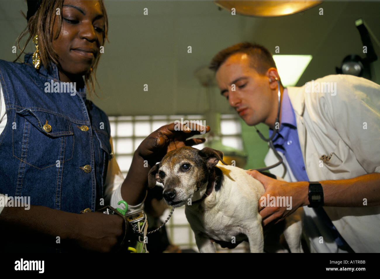 VET AND  DOG OWNER AT BLUE CROSS HOSPITAL 1994 - Stock Image