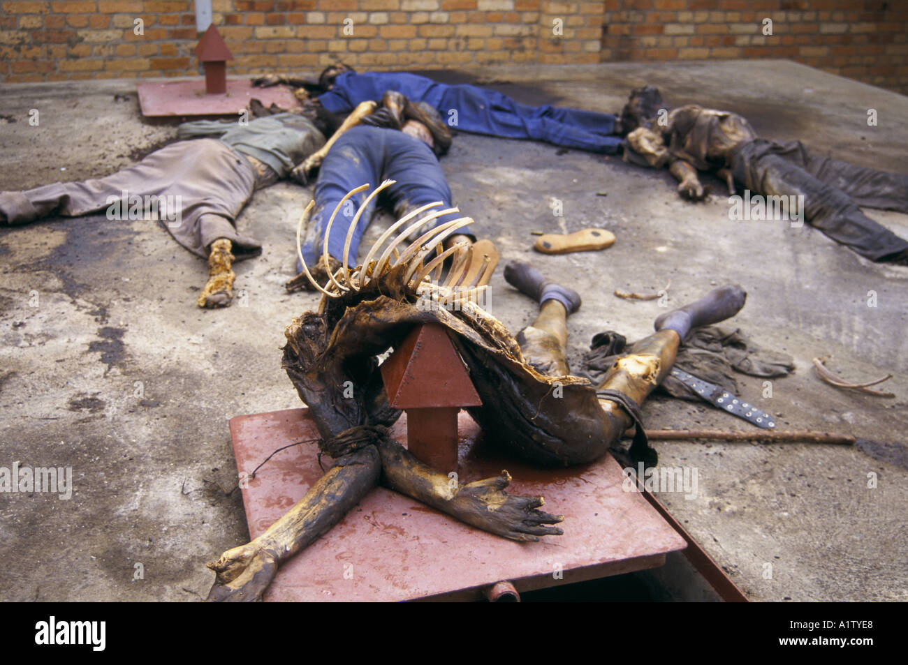 Kabgayi massacre site.TORTURED BODIES. RWANDA GENOCIDE.Dead Body with rib cage exposed and hands tied behind back.1994 - Stock Image