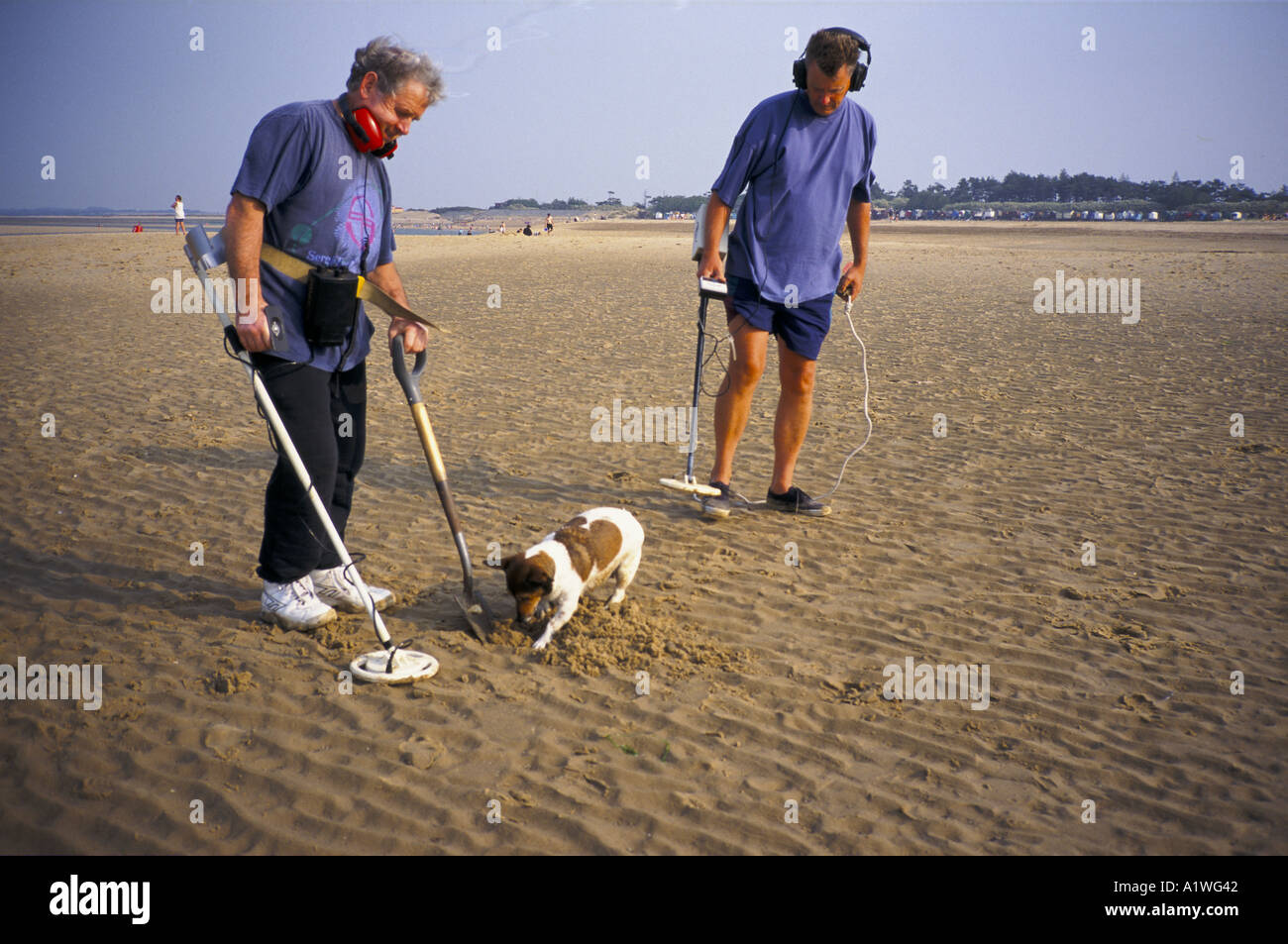 Jew Detector: TWO MEN WITH METAL DETECTOR AND PET DOG DIGGING IN THE