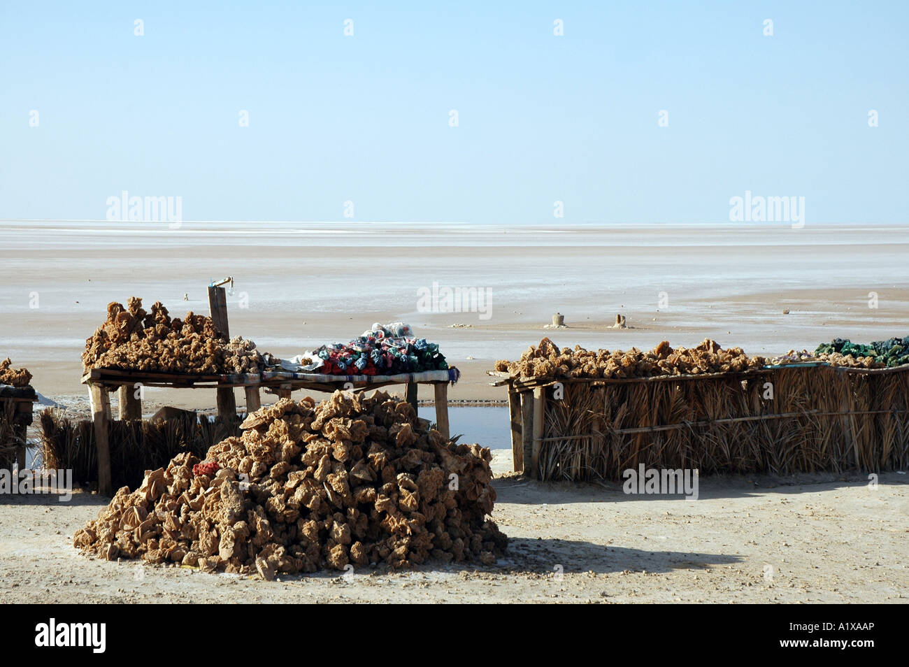 Souvenirs stall with desert roses on the roadside of causeway crossing Chott el Jerid lake in Tunisia - Stock Image