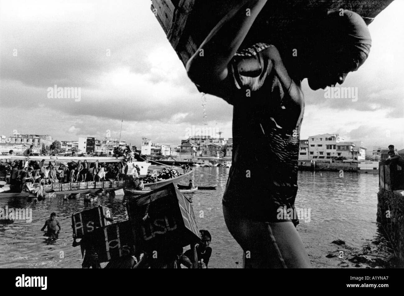 Men at Manado Bay unload fish caught just off the bay showing unusually high concentrations of mercury levels. - Stock Image