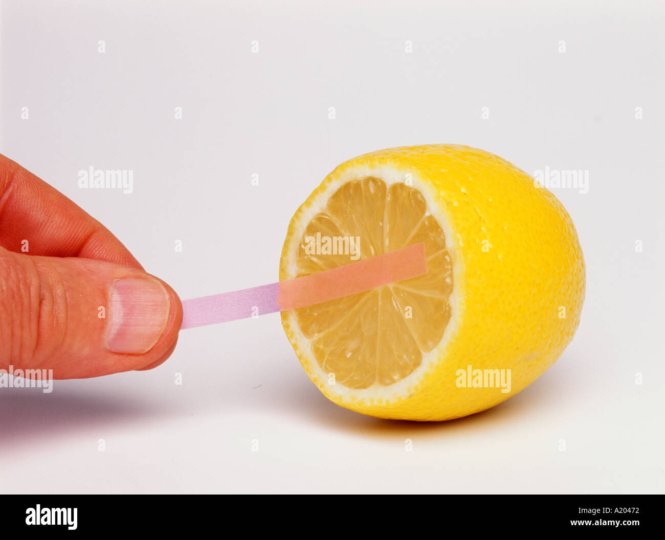 blue litmus paper turns red showing that lemon juice is