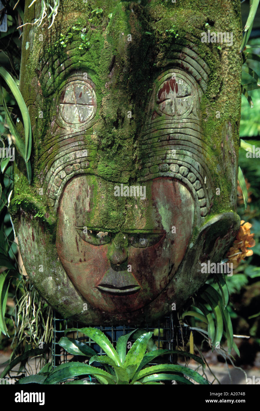 Traditional carving of a Bhuddha s head at the Botanical Gardens - Stock Image