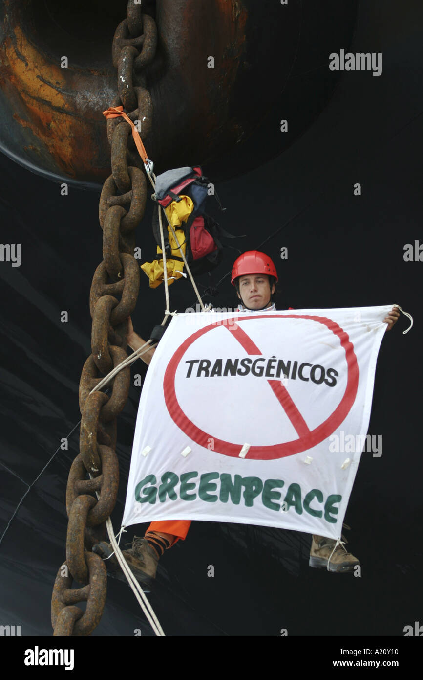 Greenpeace activists protest against genetically modified foods, and soya, on bulk carrier ship, Brazil - Stock Image