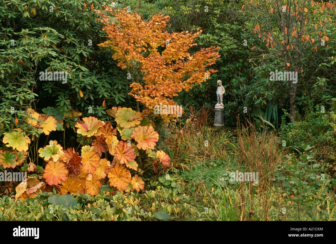 Autumn trees in woodland garden with statue Stock Photo: 10375015 ...