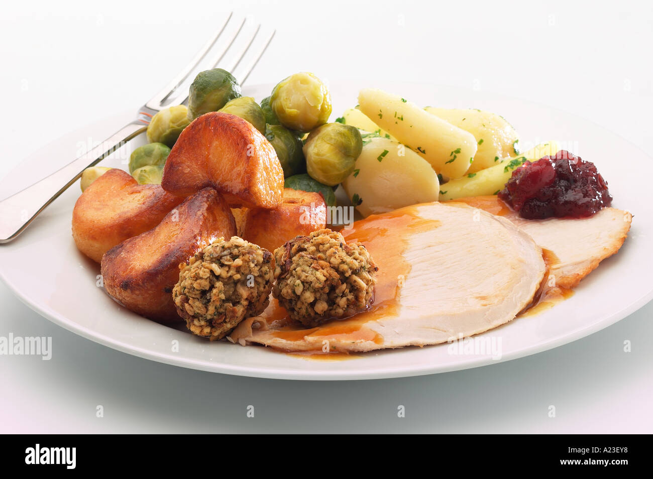 Plate of Christmas dinner with turkey stuffing roast potatoes sprouts gravy and cranberry sauce & Plate of Christmas dinner with turkey stuffing roast potatoes ...