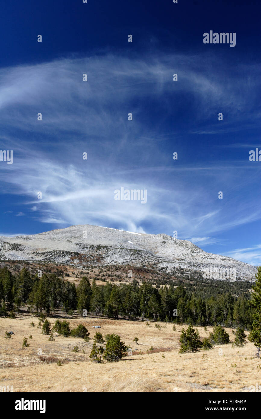 Cirrus clouds and forest, near Tioga Pass in Yosemite National Park. Stock Photo
