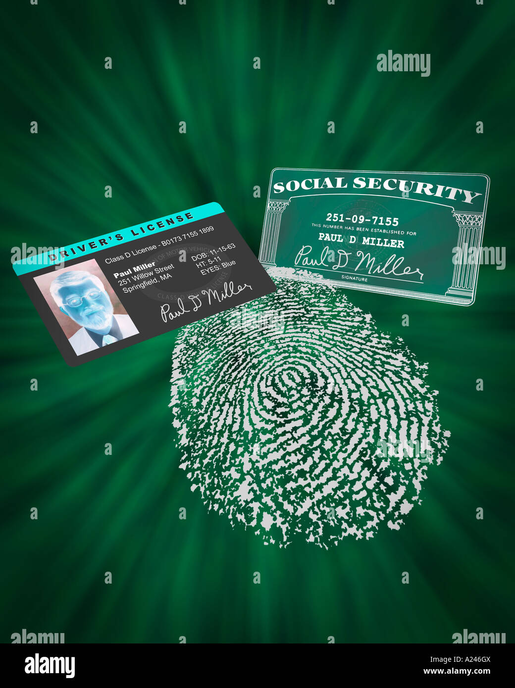 Proof of identity including fingerprint social security card and drivers license licence to prevent identity theft - Stock Image