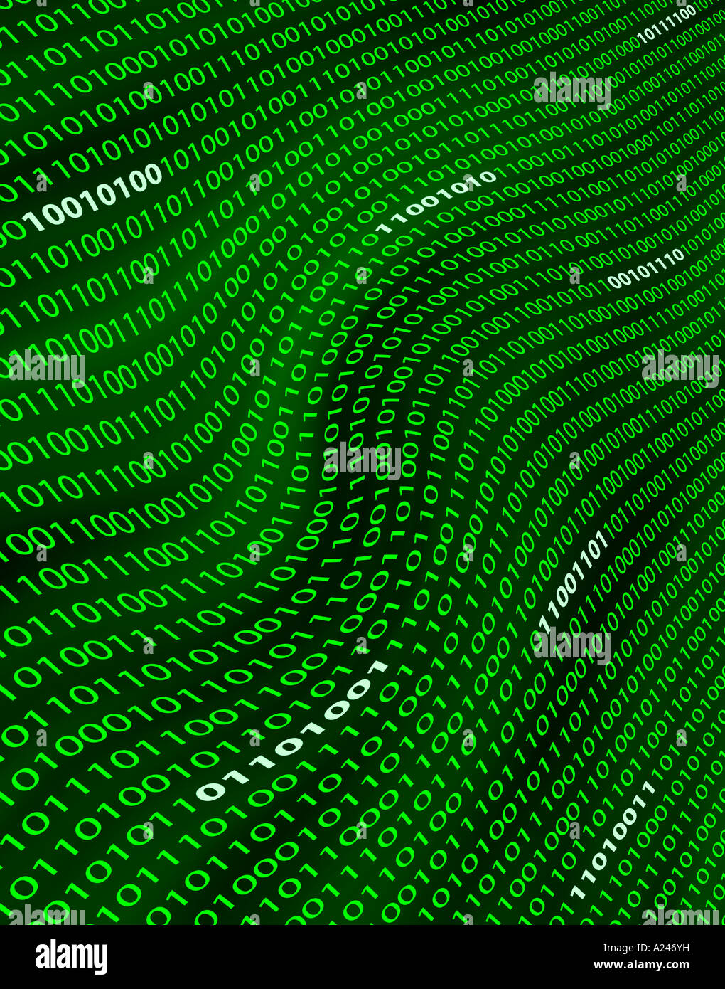 A distorted digital field of green binary numbers or code - Stock Image