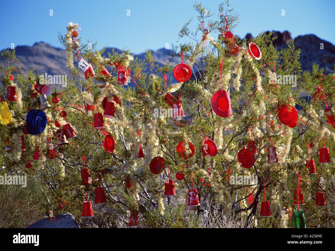 Christmas Tree In The Desert.Close Up Of Decorations On Desert Christmas Tree Arizona Usa