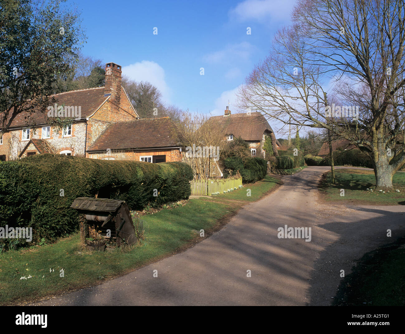 FLINT and THATCHED COTTAGES beside the village green. Chute Cadley Wiltshire England UK Stock Photo