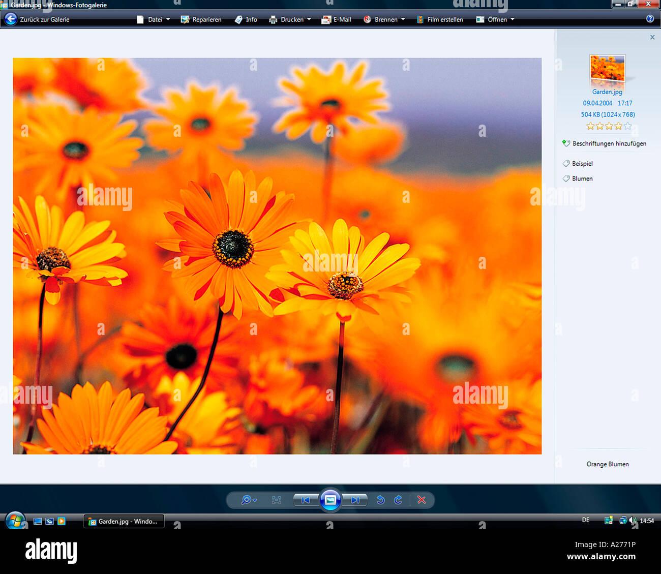 Microsoft Windows Vista, german version, Windows Photo Gallery Application, screenshot - Stock Image