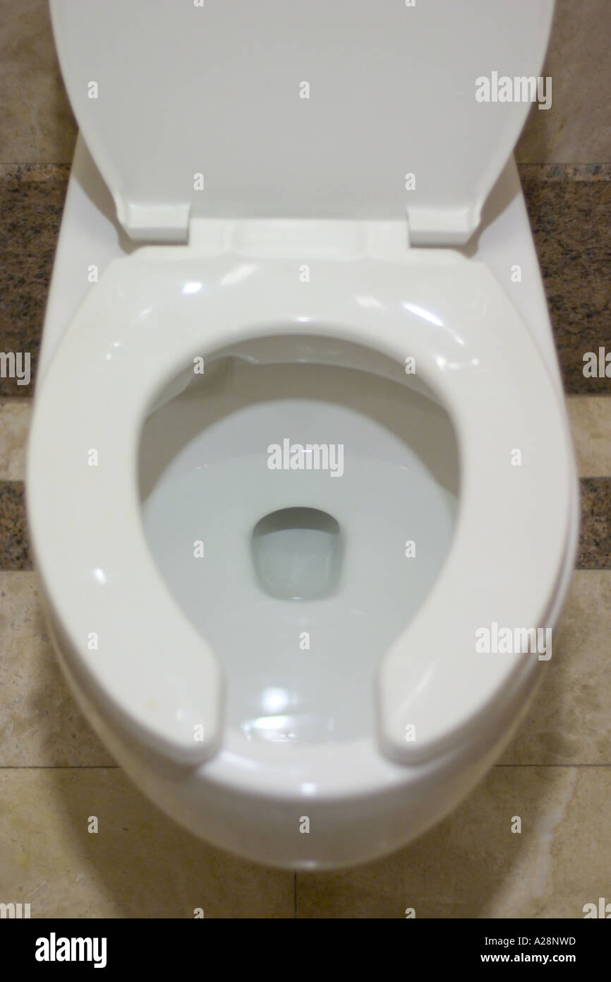 Prime Toilet Bowl With Seat Cover Down Stock Photo 5967964 Alamy Beatyapartments Chair Design Images Beatyapartmentscom