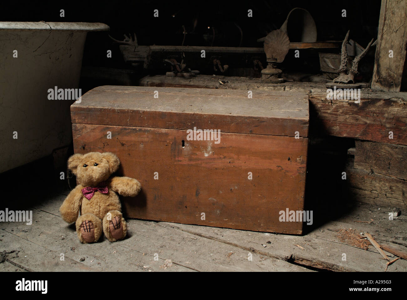 Teddy Bear and an Old Toy Box in the Dusty Attic Space of a House - Stock Image