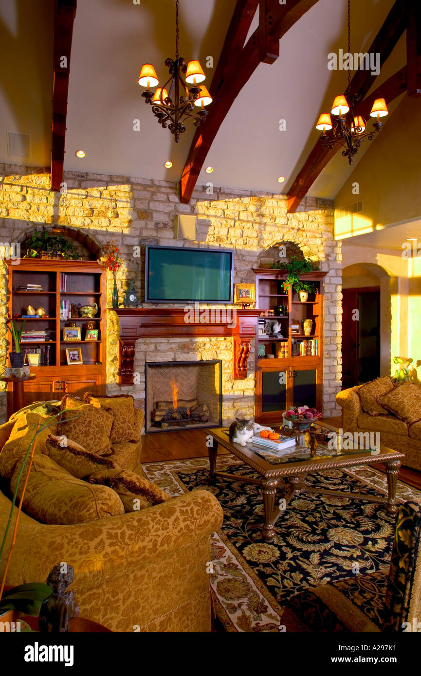 Luxury Home Interior Living Room With Fireplace And Cat Sitting On Coffee  Table In Late Afternoon Sun Loveland, Colorado, USA.