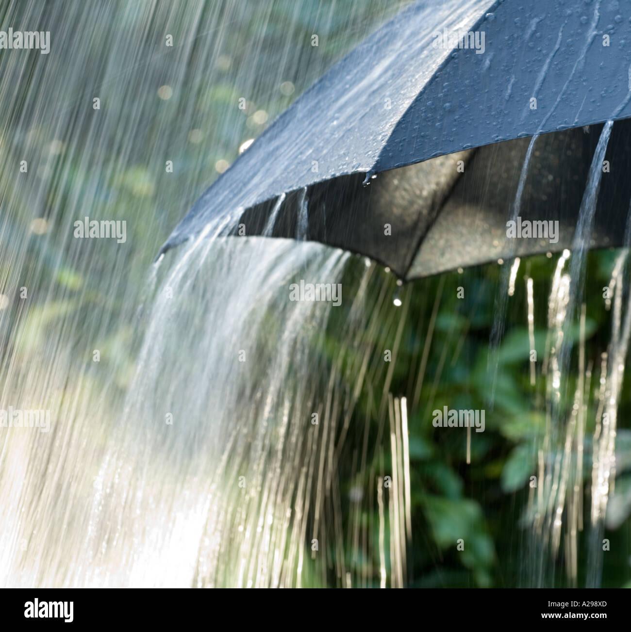 closeup view of heavy rain on black umbrella Stock Photo ...