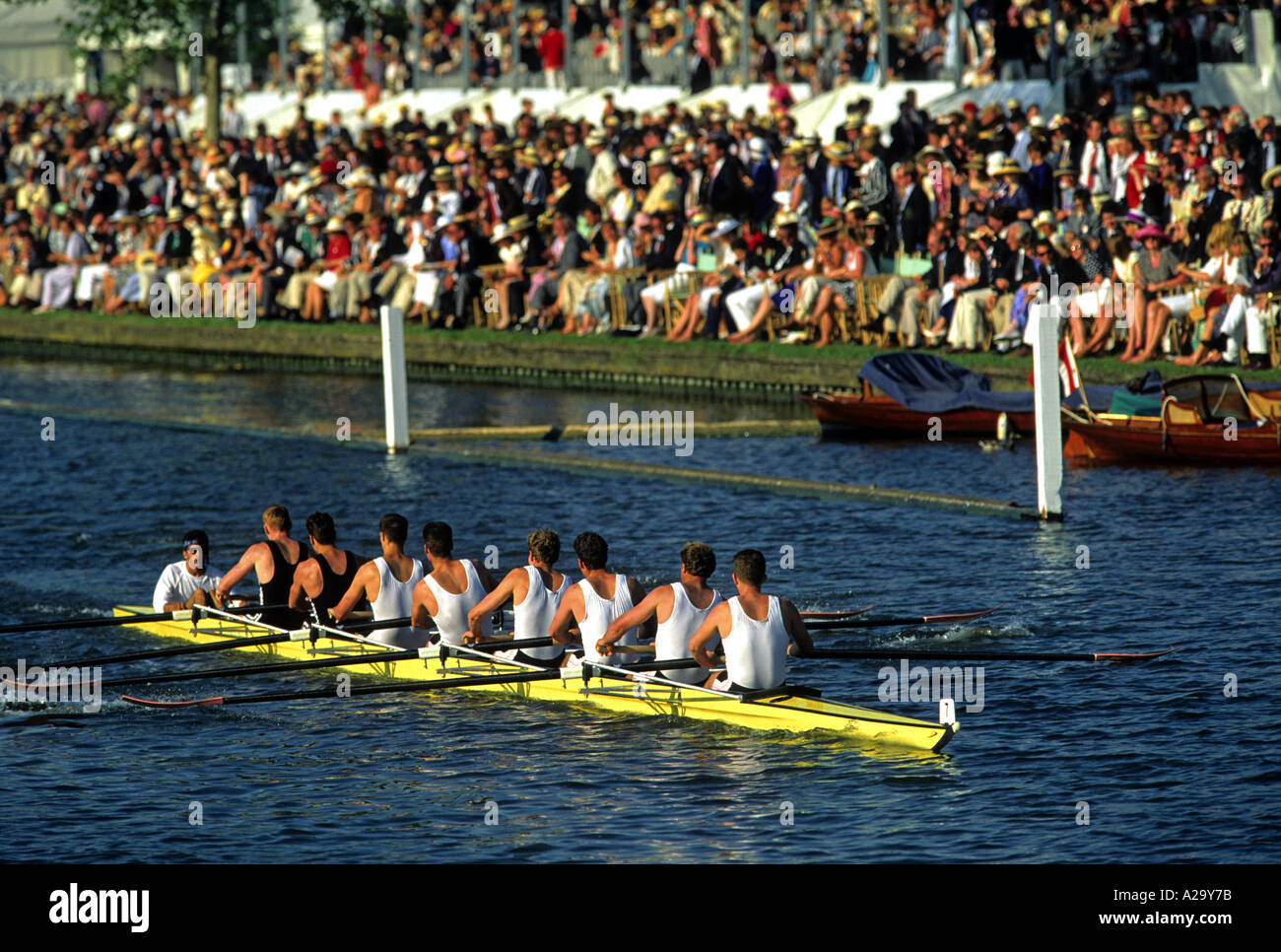 The view from behind of a men s coxed Eight rowing past the crowd during a race at the Henley Royal Regatta - Stock Image