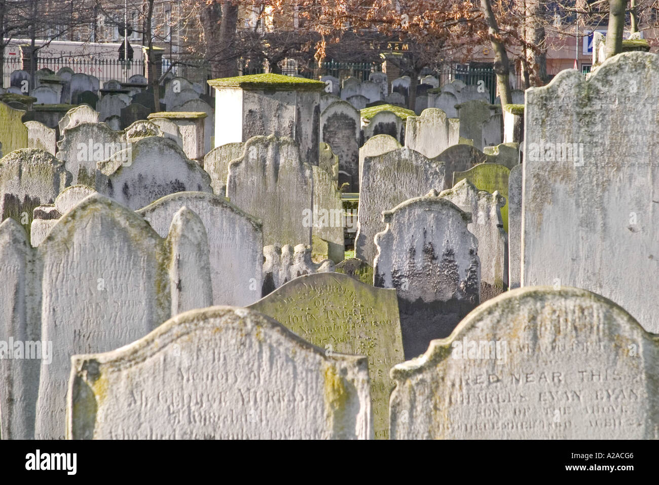 Gravestones in Bunhill Fields, London, England - Stock Image