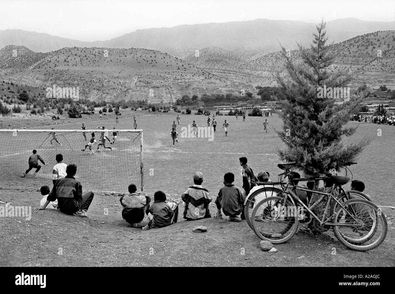 Seamless Vinyl Photography Backdrop Football Stadium Match: Soccer Pitch Black And White Stock Photos & Images