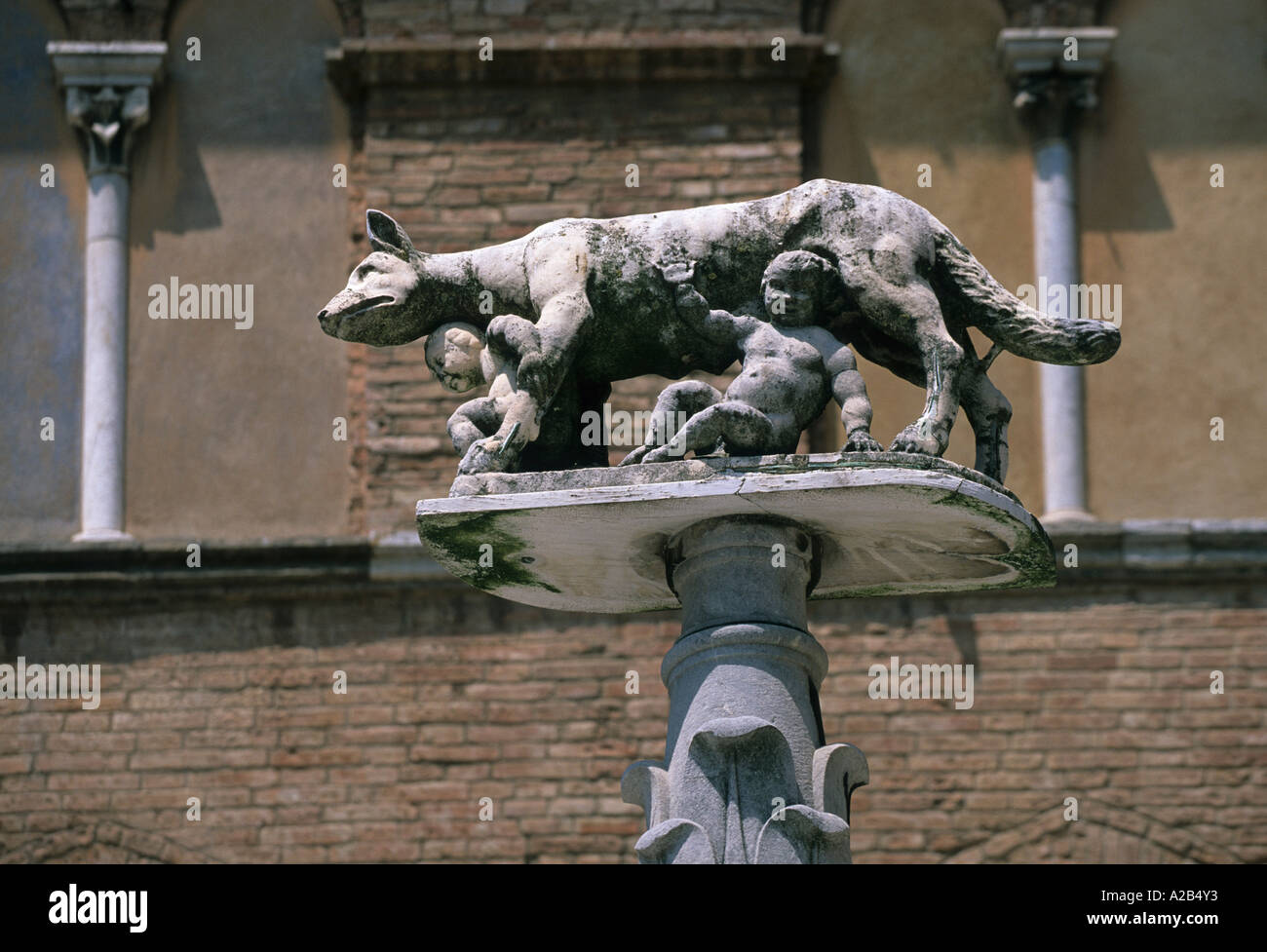 Romulus and Remus with roman wolf Siena Tuscany Italy - Stock Image
