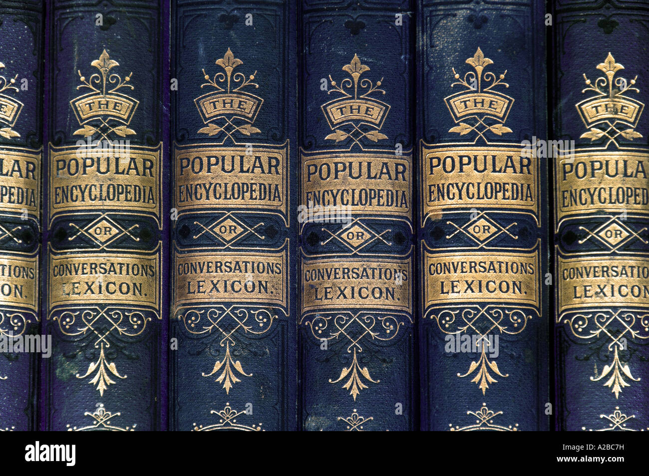 Vintage Popular Encyclopaedia or Conversations Lexicon 1875 - Stock Image