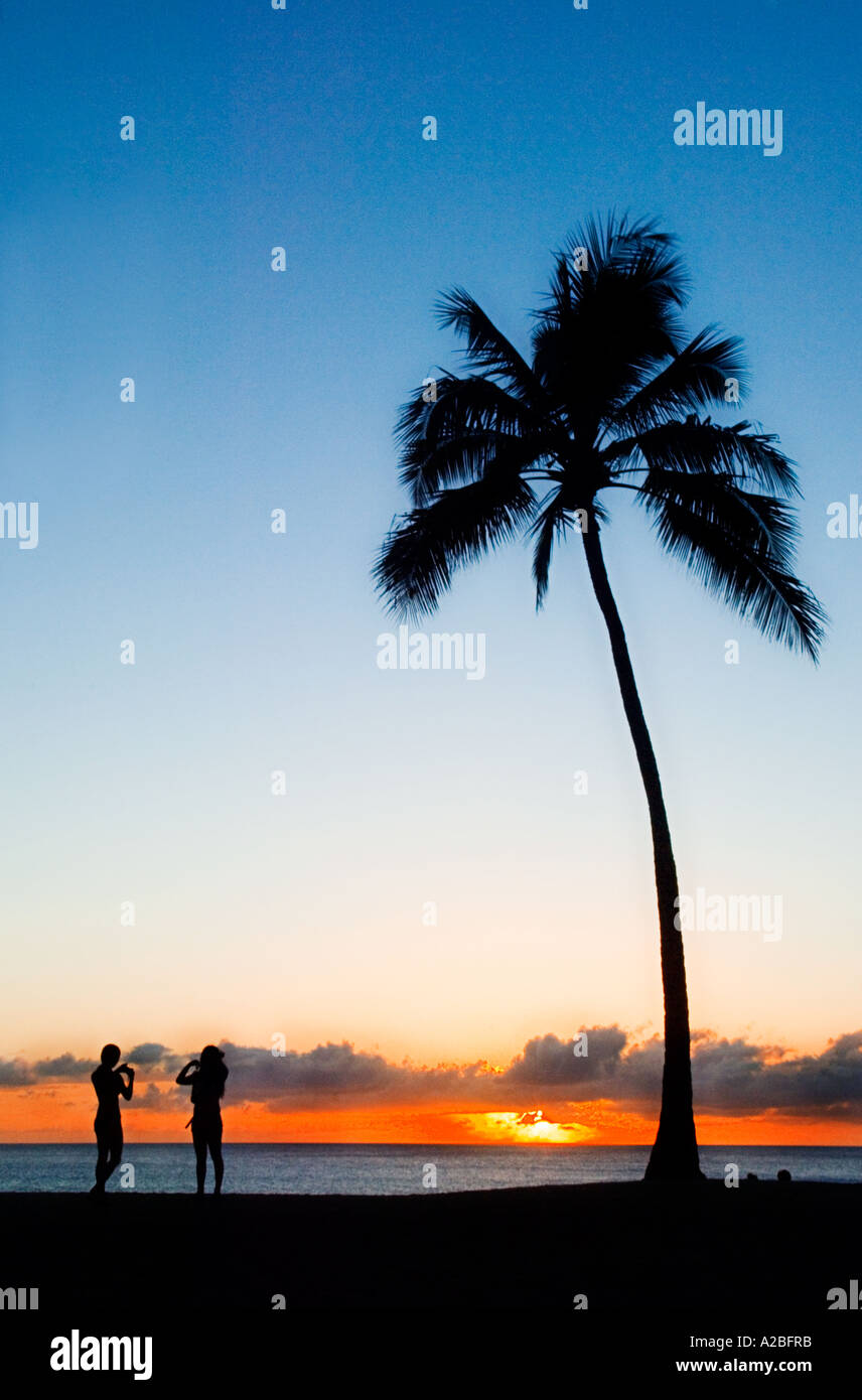 beach goer poses for a digital picture near picturesque hawaiin palm tree sunset - Stock Image