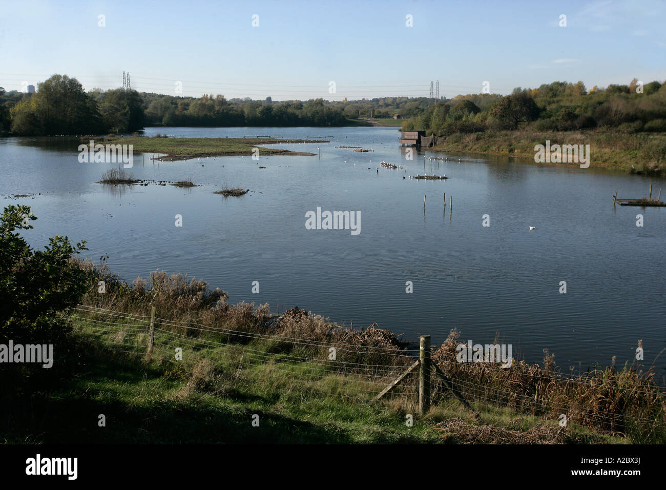 Sandwell Valley West Midlands RSPB reserve - Stock Image