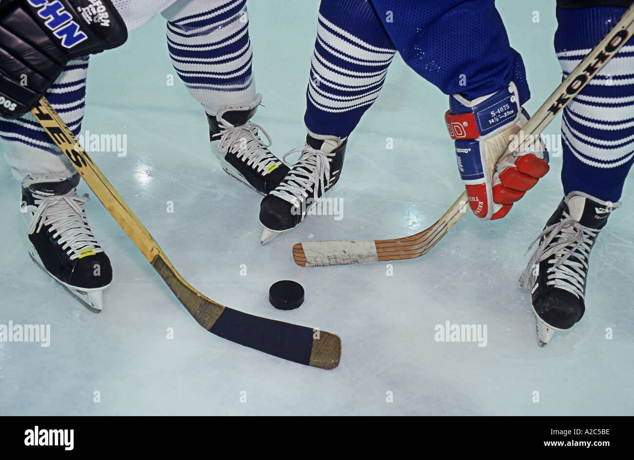 Close up of a hockey faceoff Hockey sticks are ready to slam the puck - Stock Image